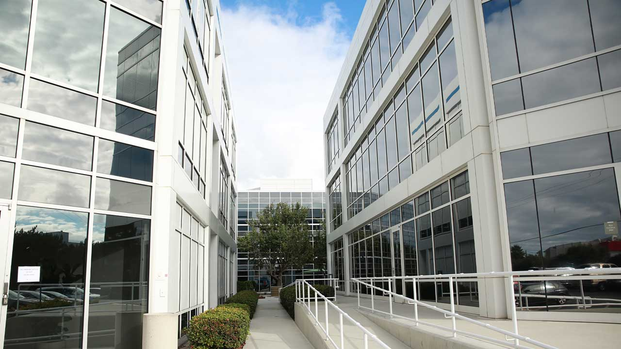 solar film for commercial buildings