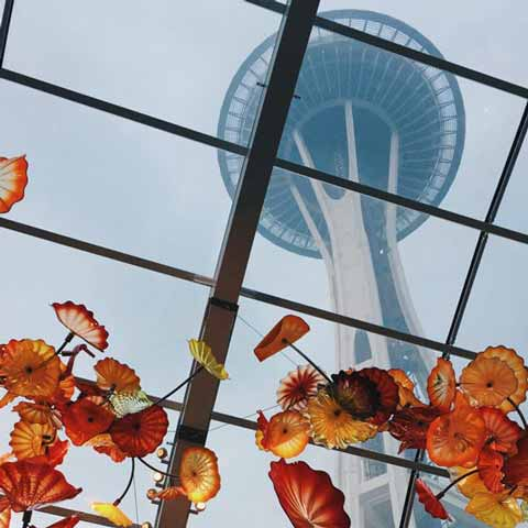 solar art window tinting seattle