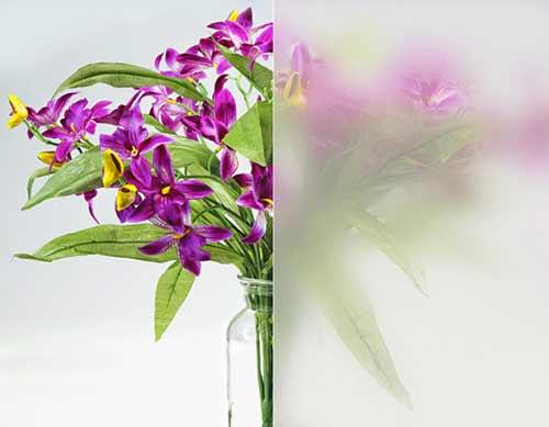 llumar-mist-decorative-window-film