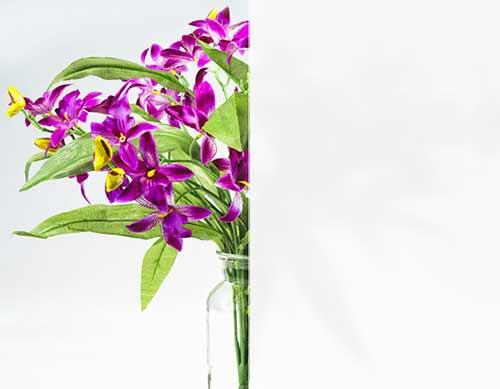 llumar-white-decorative-window-film