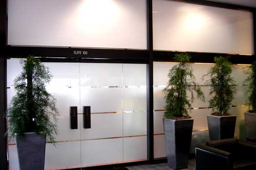 frosted window film for office entry
