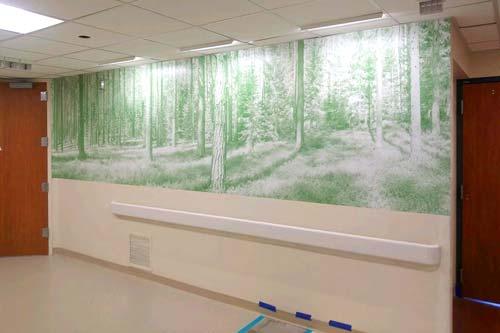tacoma wall graphics install