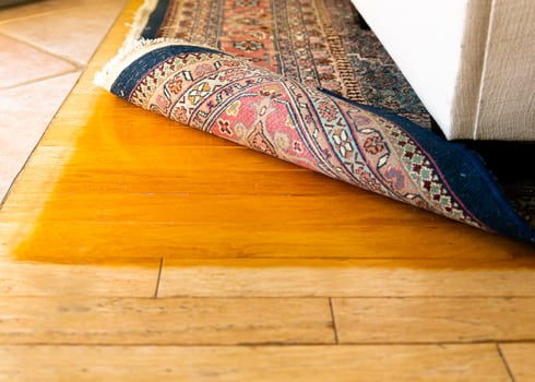 hardwoord-floor-fading-residential--carpet